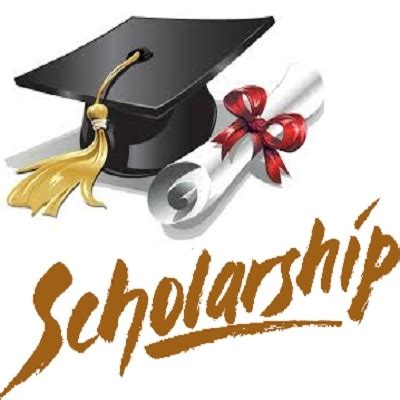 Must scholarship research proposal 2017